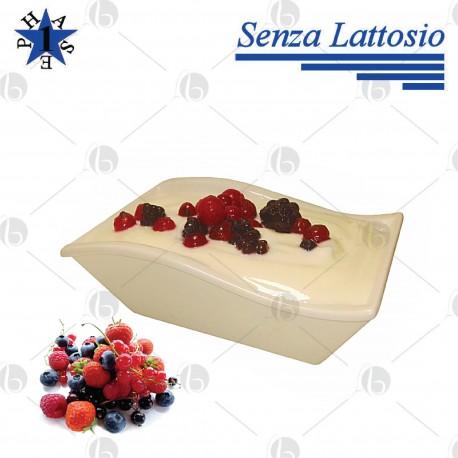 Yogurt Proteico Frutti di Bosco senza Lattosio 180 ml - FASE 1